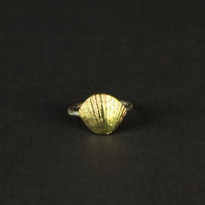 Brass small shell ring